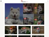 Web Action Animaux